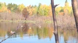 Duck Hunting: Wisconsin Northern Duck Opener 2014 - Hardline Outdoors