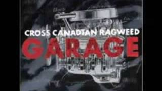 Dimebag - Cross Canadian Rag Weed - Garage album