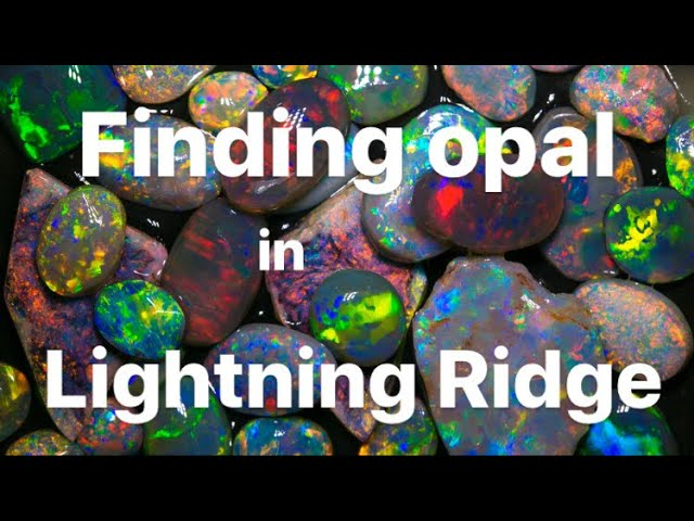 Where To Find Opal In Lightning Ridge Youtube