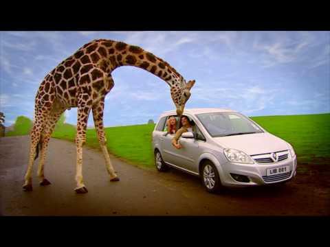 Our Films - TV Commercials | Top Banana FIlm