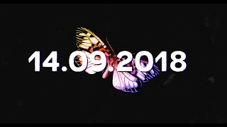 Label Suisse Festival - Vendredi 14.09.2018