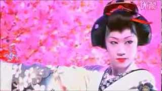 夜桜お七(坂本冬美) 唄:トワイライト・秋子