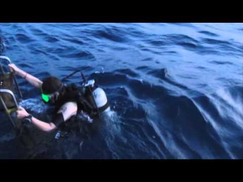 Dive Trip Koh Prins Koh Tang 2013