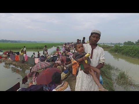 EU Commissioner dennounce 'ethnic cleansing' of Rohingyas