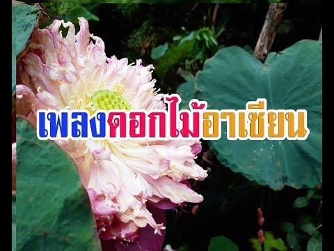 เพลงดอกไม้อาเซียน