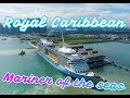 ROYAL CARIBBEAN | Mariner of the Seas | MUST SEE and tour