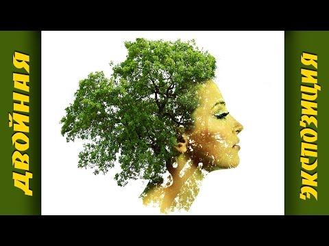 Двойная экспозиция в Фотошопе. Создаем девушку-дерево