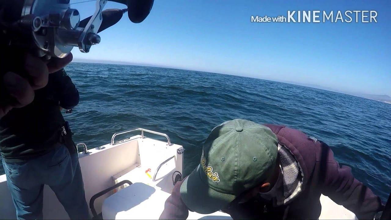 Half Moon Bay Deep Reef Rock Cod Fishing September, 2015