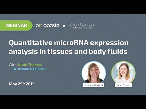 Quantitative microRNA expression analysis in tissues and body fluids