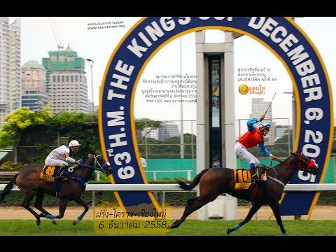 Danthai: ม้าแข่งชิงถ้วยพระราชทานคิงส์คัพ 2015 (สาระจัดเต็ม)