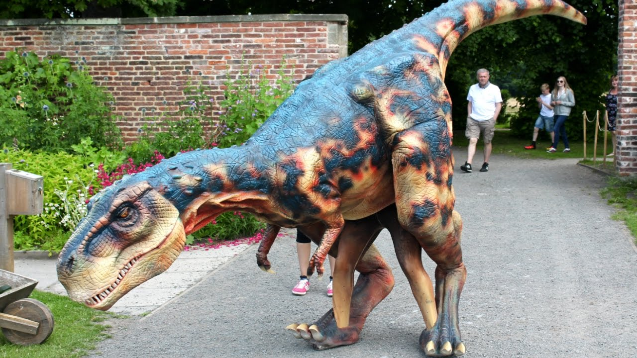 Real Dinosaurs T Rex Real life T-Rex UK - Y...