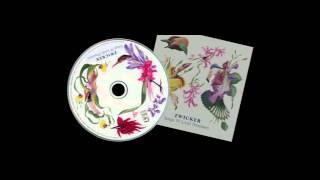 Zwicker - Dragon Fly (feat Billy Oden - Soultourist remix)