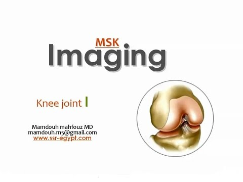 Imaging of the Knee joint ( part I ) -DRE 1 - Dr Mamdouh Mahfouz