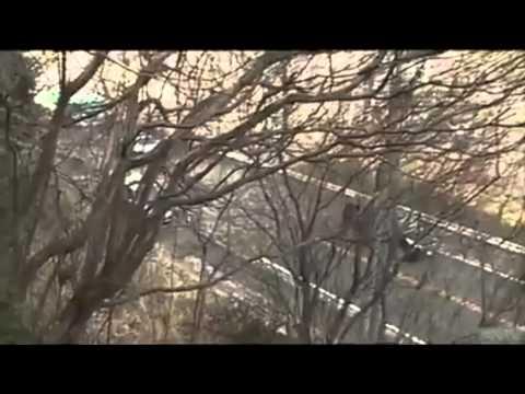 Tsunami in Minamisoma, Fukushima Prefecture, Japan