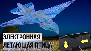 Электронная летающая птица Обзор + ПОЛЕТ Taibao Flapping Wing   RC LIFE