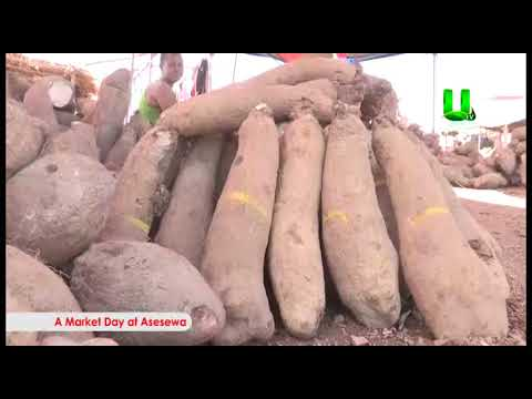 UTV Documentary: A Market Day At Asesewa