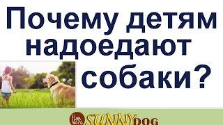 Ребенок не ухаживает за собакой? почему детям надоедают собаки? Дети бросают собак и уход за ними?