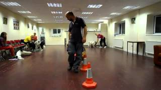 Purbeck Agility Group - Dog Obedience Training