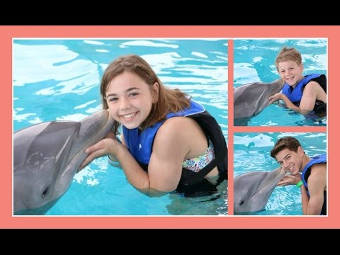 DOLPHIN KISSES   Day 3 Florida Celebration Vacation   Flippin
