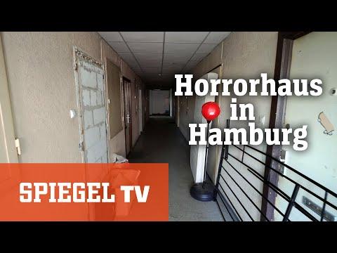 Horror-Haus in Hamburg: Leben zwischen Schimmel und Dreck