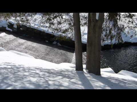 Walking in Forest Park, Springfield, Massachusetts, Winter 2014