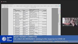 Select Budget Committee Session II 8/5/20