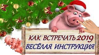 2019 ВЕСЁЛАЯ ИНСТРУКЦИЯ КАК ВСТРЕЧАТЬ НОВЫЙ ГОД