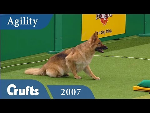 ABC Agility Final from Crufts 2007 | Crufts Classics