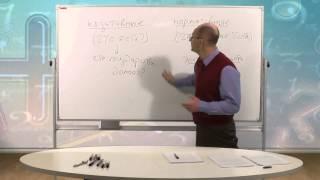видео Основные модели взаимодействия государства и экономики