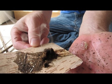 Hand Drill Friction Fire - From Agony to Ember (A Beginners Perspective)