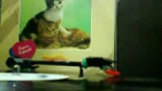 Video alleycats-istana pasir (vinyl lp records) download MP3, 3GP, MP4, WEBM, AVI, FLV Juni 2018