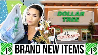DOLLAR TREE HAUL | FARMHOUSE DOLLAR STORE FIND + NEW BATH PRODUCTS | Sensational Finds