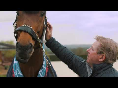Nick Skelton's tribute to Big Star
