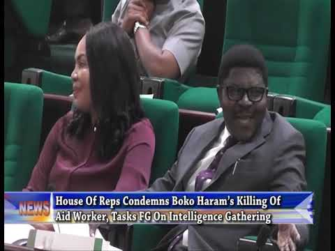 House Of Reps Condemns Boko Haram's Killing Of Aid Worker, Tasks FG On Intelligence Gathering
