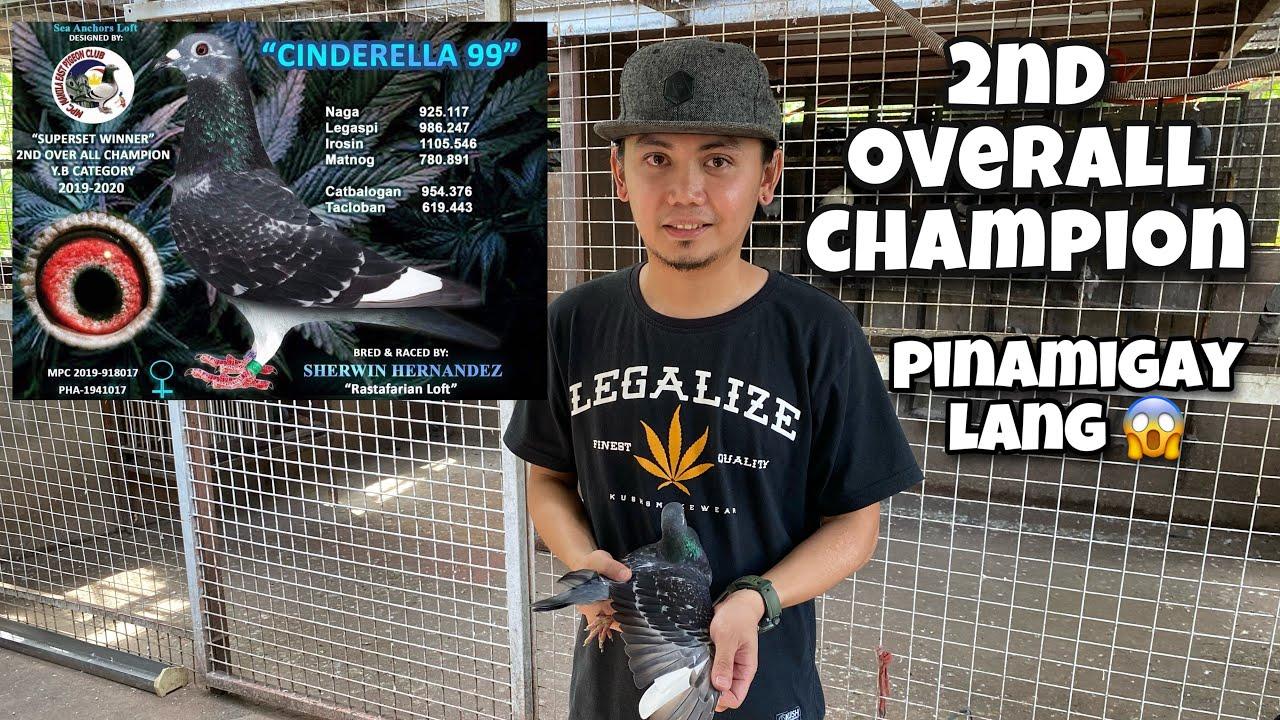 Sherwin Hernandez, 2nd Overall Champion, pinamigay lang |Reggie Cruz Loft & Aviary #reggiecruzloft