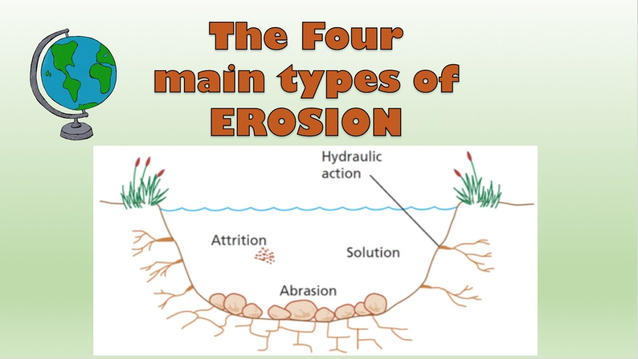 erosion student essay We all understand cause-effect relationships for example, lightning can cause fire as a student  what is a cause-effect essay 134 unit 6 • cause-effect essays.