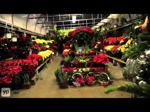 Whitestone, NY | Queens Garden Florist, Inc. | Florists