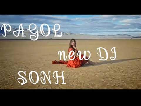 arey-pagal-hoye-jabo-ami-pagol-hoye-jabo-new-full-song-dj-20191080p