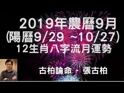 2019年農曆9月(國曆9/29~10/27) 12生肖運勢八字流月分享 ~ ~ ~