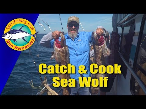 613 Sea Wolf