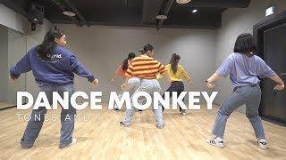 Gambar cover TONES AND I - DANCE MONKEY / 실용무용 입시반 choreography