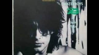 Watch Waterboys All The Things She Gave Me video