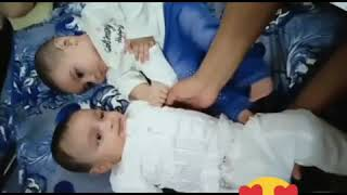 Cute funny Babies Fighting Compliation