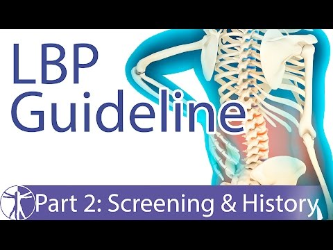 Low Back Pain Guideline: Screening & History-Taking (Part 2)