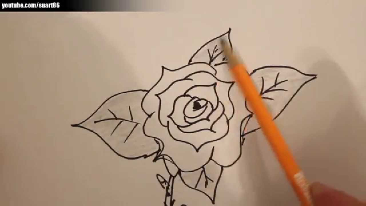 Wie Zeichnet Man Eine Rose Youtube