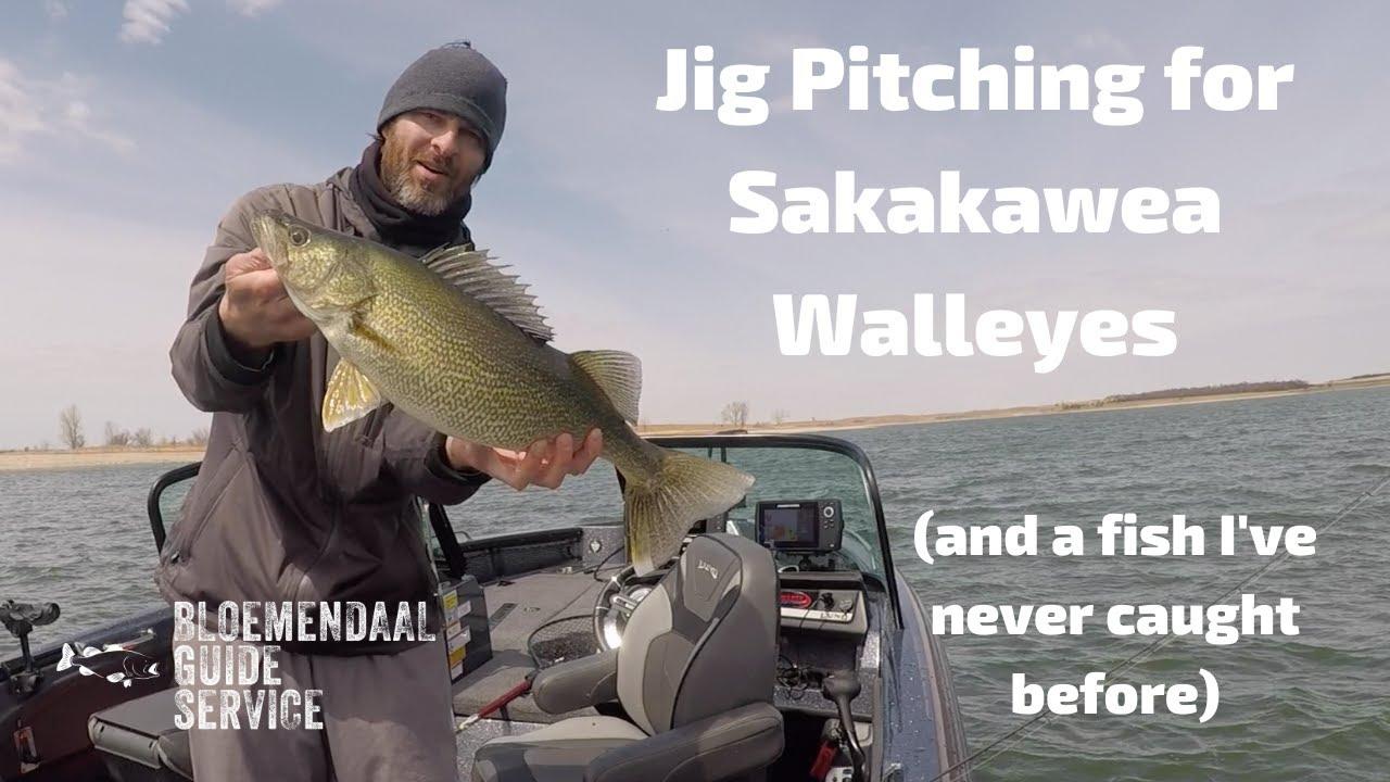 Sakakawea - May 5