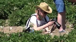 Rolnictwo zrównoważone - praktyczne rozwiązania w gospodarstwie