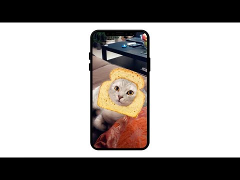 Snapchat's Cat Lenses lets you take even more ridiculous pictures of your pet