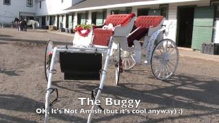 Author Plays on An Amish Buggy Ride Book Launch Day