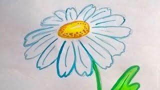Как нарисовать ромашку акварелью